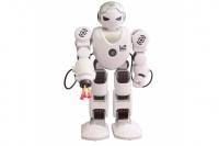 Робот Shantou Gepai Alpha Robot Feng Yuan K1
