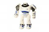 Радиоуправляемый робот Crazon Create Toys 1701B