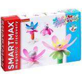 Магнитный конструктор Bondibon Специальный (Special) SmartMax набор: Цветочная энергия, арт. 251