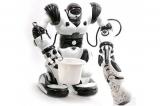 Радиоуправляемый интеллектуальный робот Jia Qi Roboactor - TT313